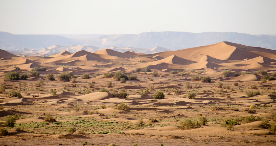 Private Desert Camp Morocco - sand dunes